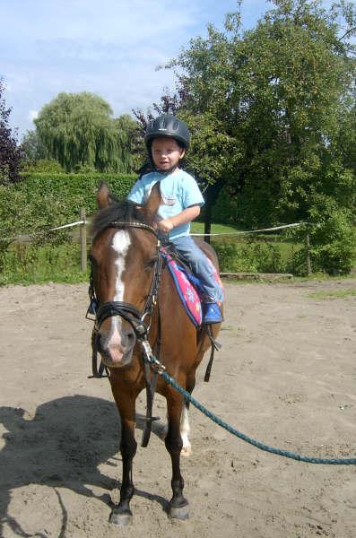 dit-is-mijn-paard