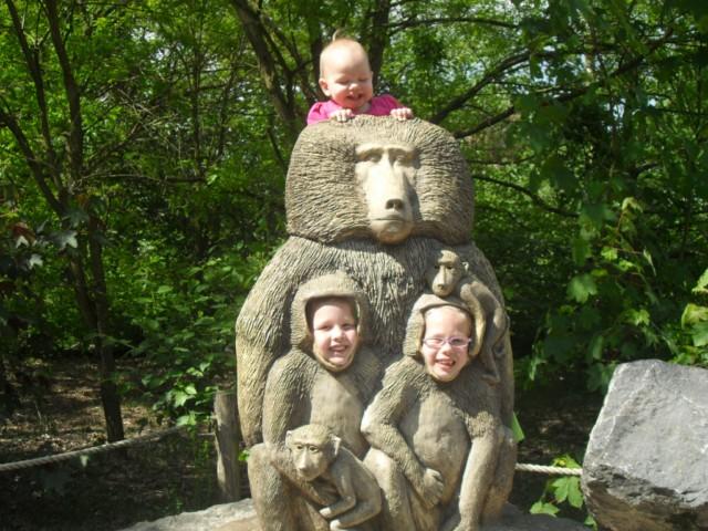 030-twee-apen-onder-mij
