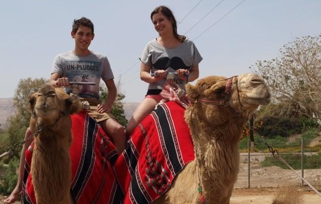 Op de kameel
