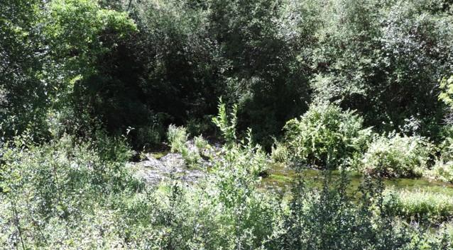 De bron van de rivier.
